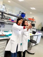 Fotoreportáž z kurzu Single Cell Gene Expression Analysis v Heidelbergu.